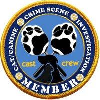 CCSI Member Badge