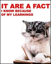 Homework cat says