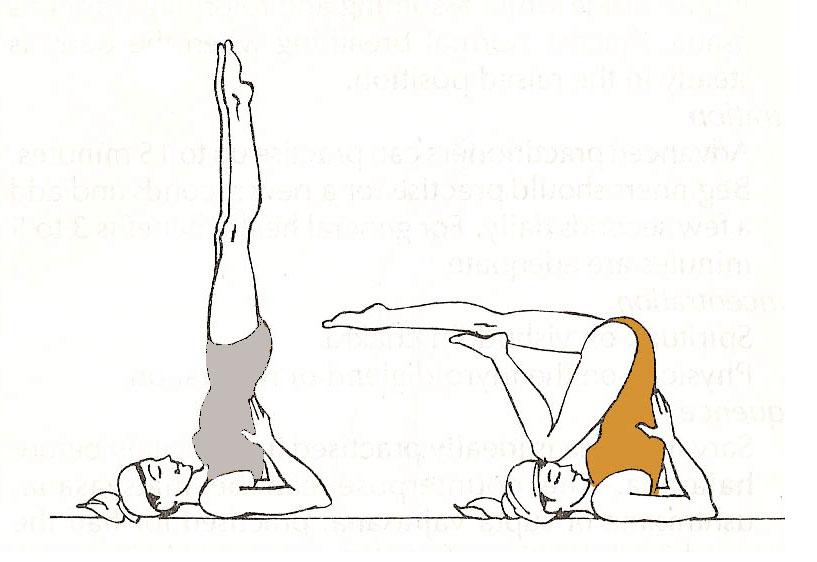 Las posturas sobre los hombros no deben faltar en una clase de yoga  completa. Este tipo de ejercicios no resultan excesivamente complicados y  se suelen ... 0f8231da6a52