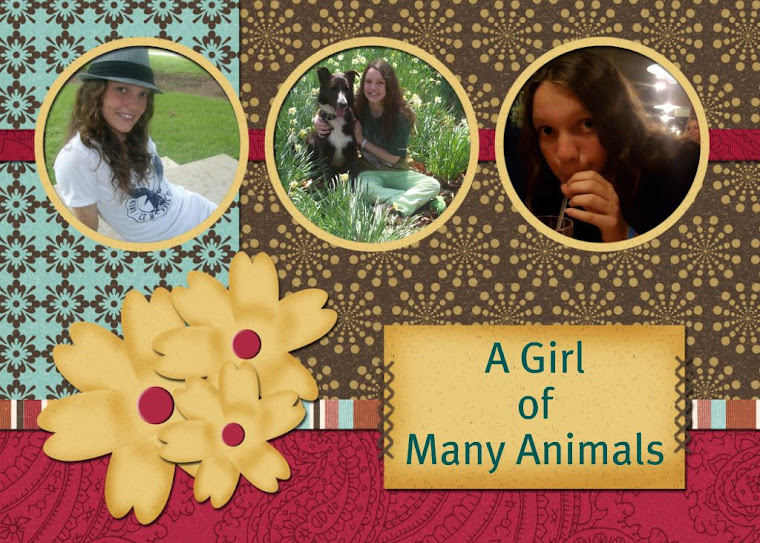 A Girl of Many Animals