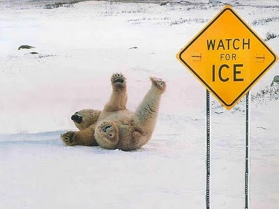 Funny Signs For Wildlife