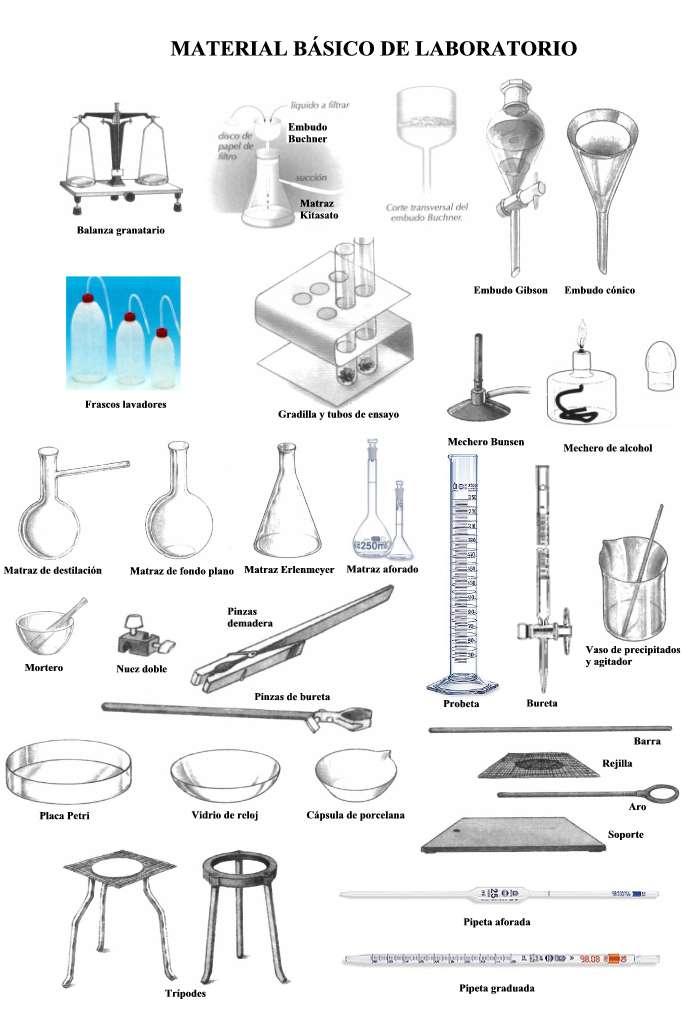 biologia y microbiologia materiales basicos usados en el