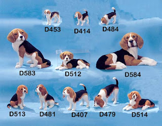 Beagle puppies and dogs at different sizes at sale hot image