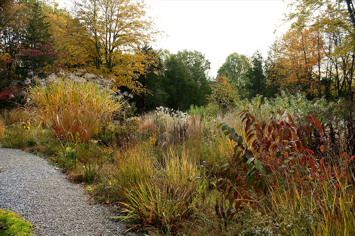 View from Federal Twist: Garden Diary: October 24 - Coming Home