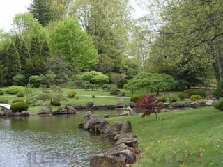 Japanese garden at Dawes