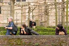 Duck Watching in Brugge