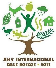Any Internacional dels Boscos