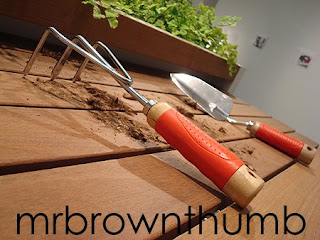 Deceptive Garden, Urban gardening planter's self