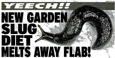 Garden slug diet
