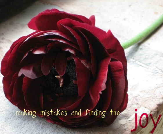 making mistakes and finding the joy