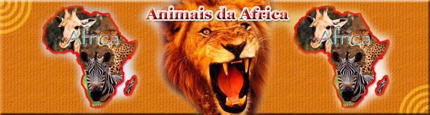 Animais da Africa