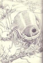 From my garden sketchbook
