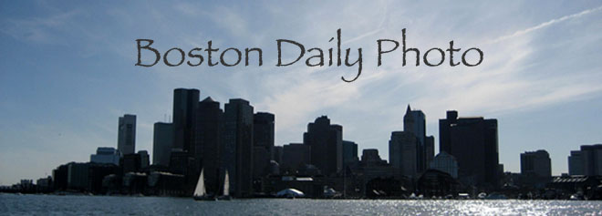 Boston Daily Photo