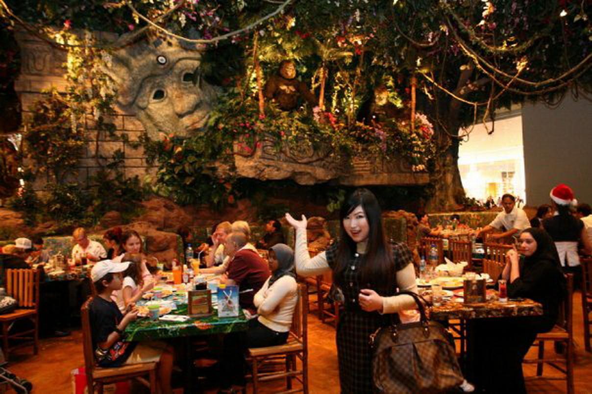 Coupons For Rainforest Cafe Nashville Tn