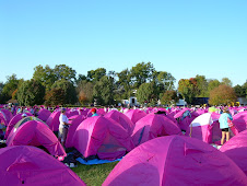 sea of pink tents