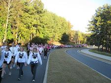miles of walkers