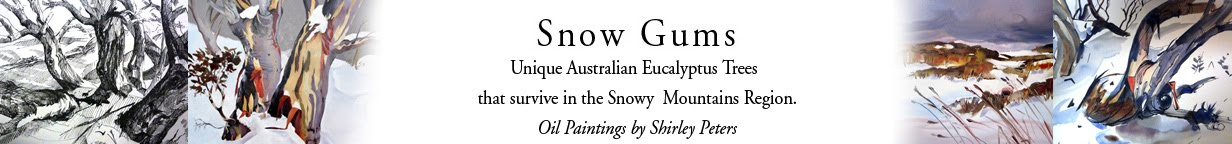 Snow Gums Blog