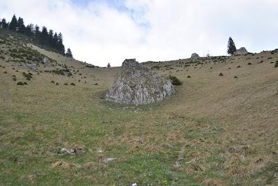 Panta abrupta pe traseul Muntele Rosu - Culmea Zaganu
