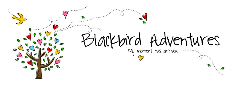 Blackbird Adventures
