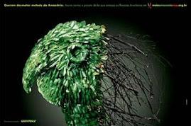 imagens do greenpeace