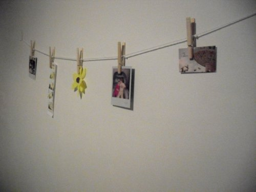 Wattlebird Clothes Pin Wall Display