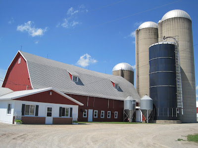 visit to a dairy How to visit a dairy farm dairy farms are full of activity from pre-dawn until after the sun goes down farmers milk and feed cows, clean barns, sell products and perform other chores to keep their farms running smoothly.