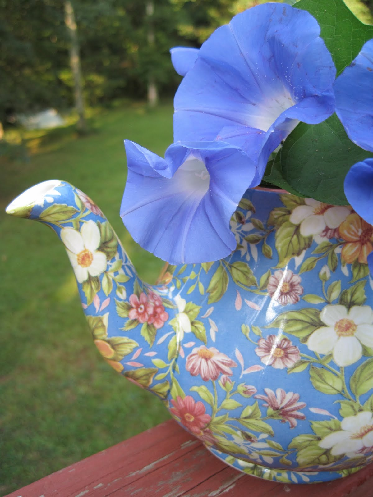 Tea With Friends: End-of-summer morning glories
