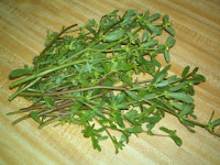 Purslane Contains Omega 3 Fatty Acid