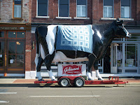 Giant cow with quilted blanket over it on Broadway