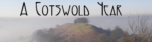 A Cotswold Year