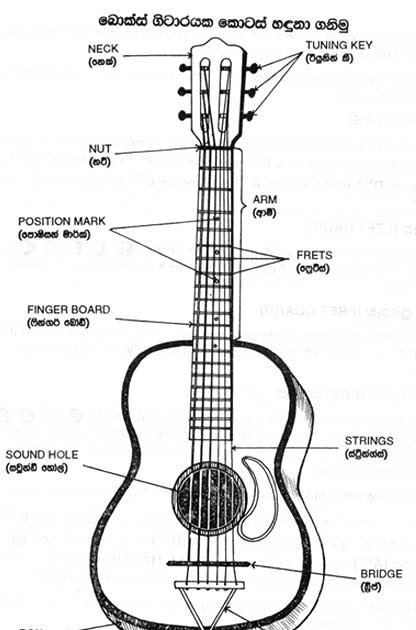 guitar lessons in sinhala  introduction in parts of guitar