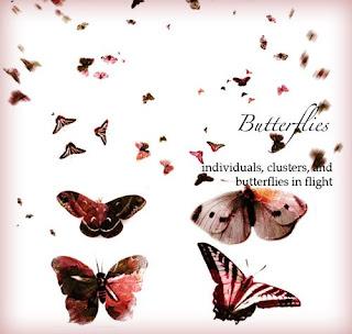 mariposa pinceles photoshop