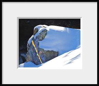 A framed photo of a large snow covered granite boulder shelters a lone golden stem of mullein, a remnant of summer past.