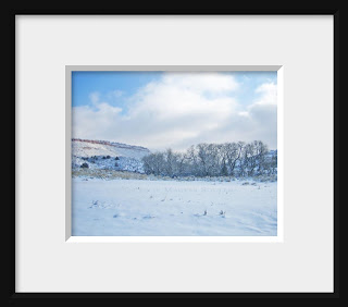 A framed photo of the western landscape turns a subtle shade of blue under the intense azure winter sky and highlights the stark row of cottonwood trees.