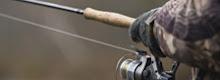 Mangler du et fisketegn?