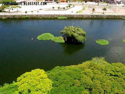 essa é a Ilha do Jegue no ano passado.