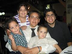 Mis cinco grandes amores...