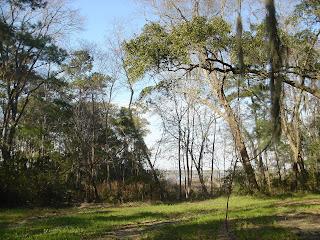 Santee Reserve scenery