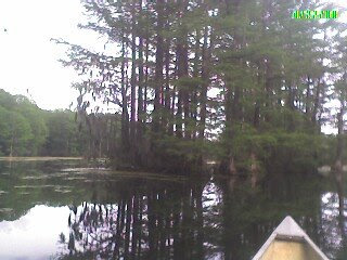 Canoeing in Greenfield Lake