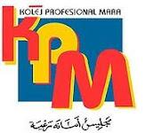 Kolej Profesional MARA