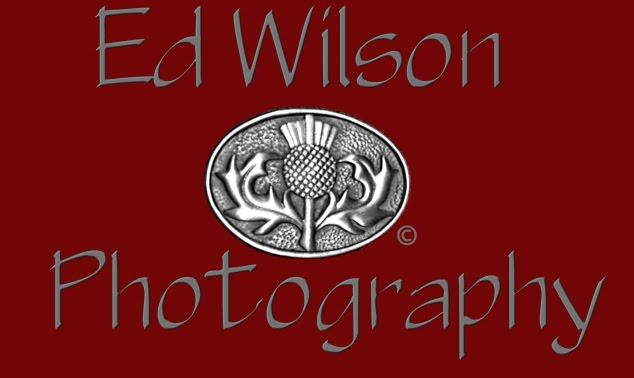 Ed-Wilson  Portraits