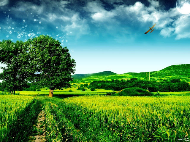 http://2.bp.blogspot.com/_B6_EUJbuASU/SbKU9Eeh0KI/AAAAAAAABzg/QrIIyF0jkg0/s1600/photo_manipulation_photo_art_magic_tree_v2.jpg