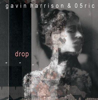 Gavin Harrison & 05Ric