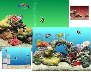  >Marine Aquarium 3 + Sharks   ScreenSavers