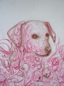Yuri the Dog