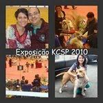 Canil MixBrasil na KCSP 2010: