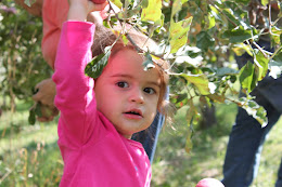 Natalie Apple Picking