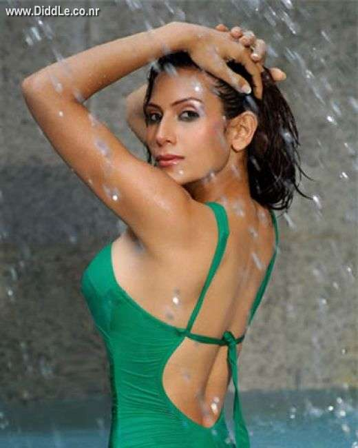Neelam Chauhan hot Photoshoot Pictures - Kingfisher Calendar Babe