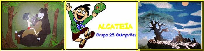 Alca_alca_teia