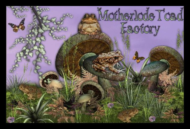Motherlode Toad Factory